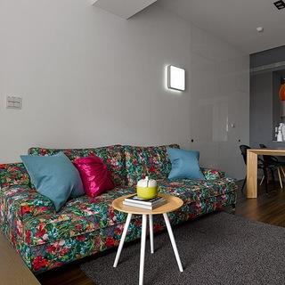 43平米机能一居室住宅