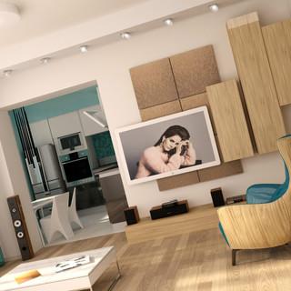 60平米理性主义与浪漫主义的一居室