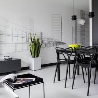 经典黑白灰现代时尚一居室