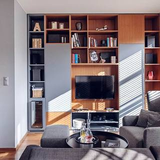 55平波兰单色现代风格一居公寓