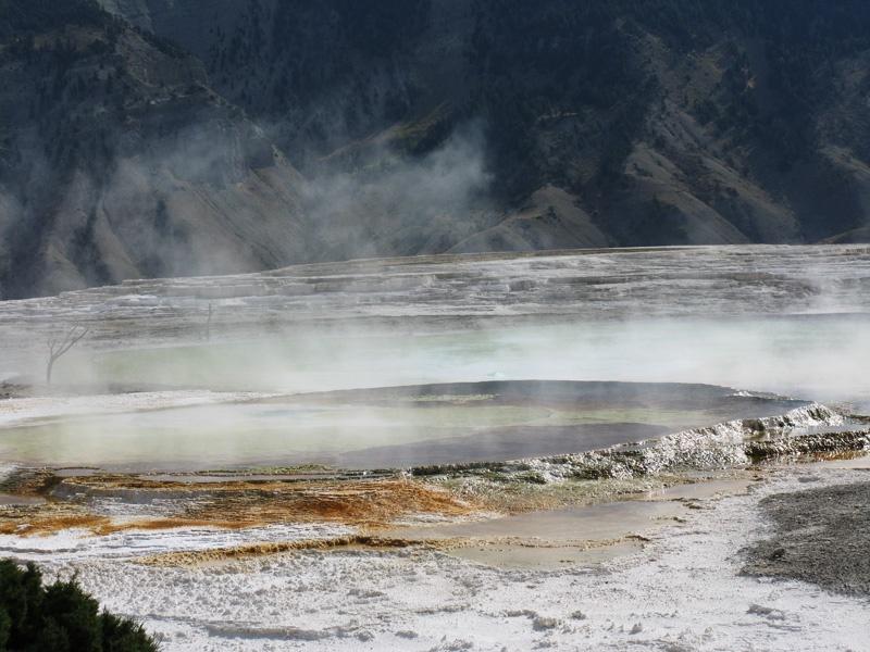 美国黄石公园的猛犸温泉(上) - sihaiyunyou - sihaiyunyou的博客