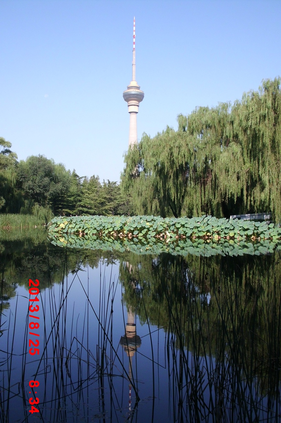 倒影中的美丽风景(原创) - ydq200888 - ydq200888的博客
