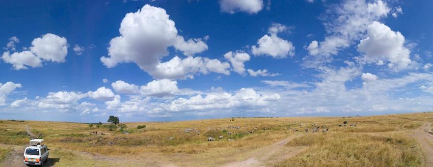 走进肯尼亚 马赛马拉游客过度影响动物正常迁徙 - 国防绿 - ★☆★国防绿JL★☆★