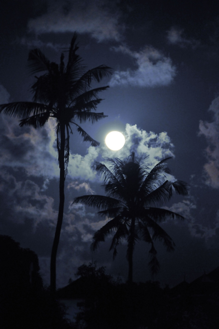 巴厘岛梦幻海滩日落美景 - 龙眼 - 龙之血脉