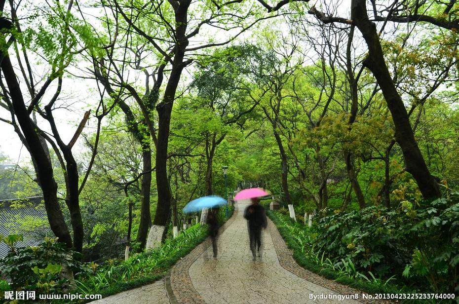 【凌波园散文】《随想在春雨时节》 - 971246405 - 971246405的博客