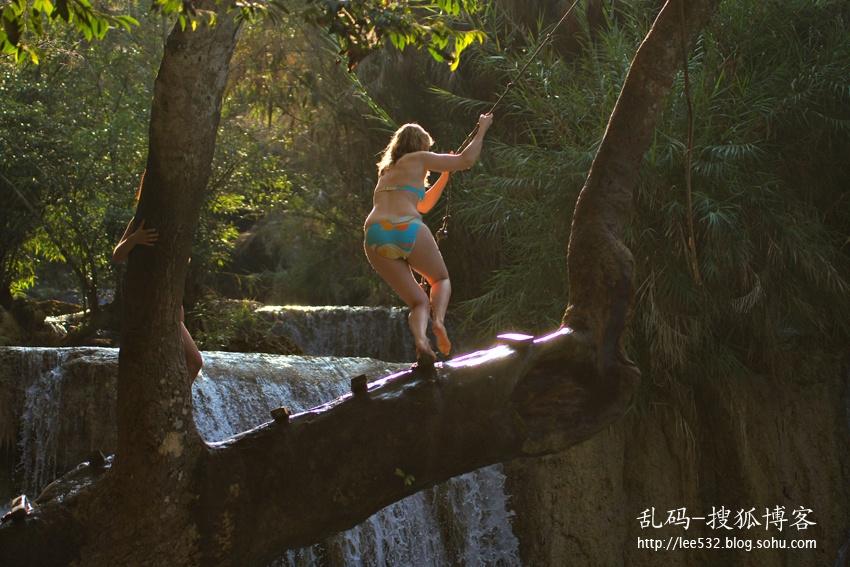 11↑水池旁一棵大树的树枝伸到了水池上方,游客们玩得正high.