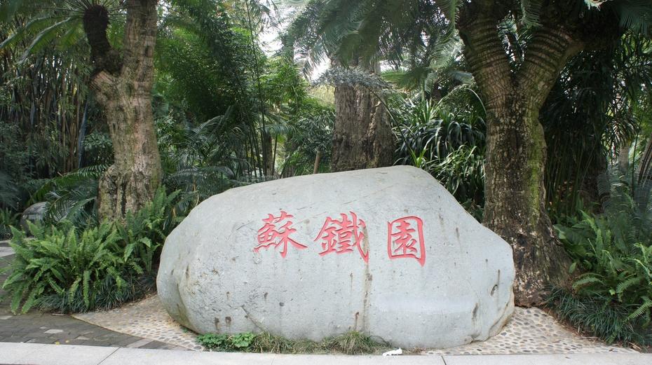南宁青秀山:千年苏铁园 - 余昌国 - 我的博客