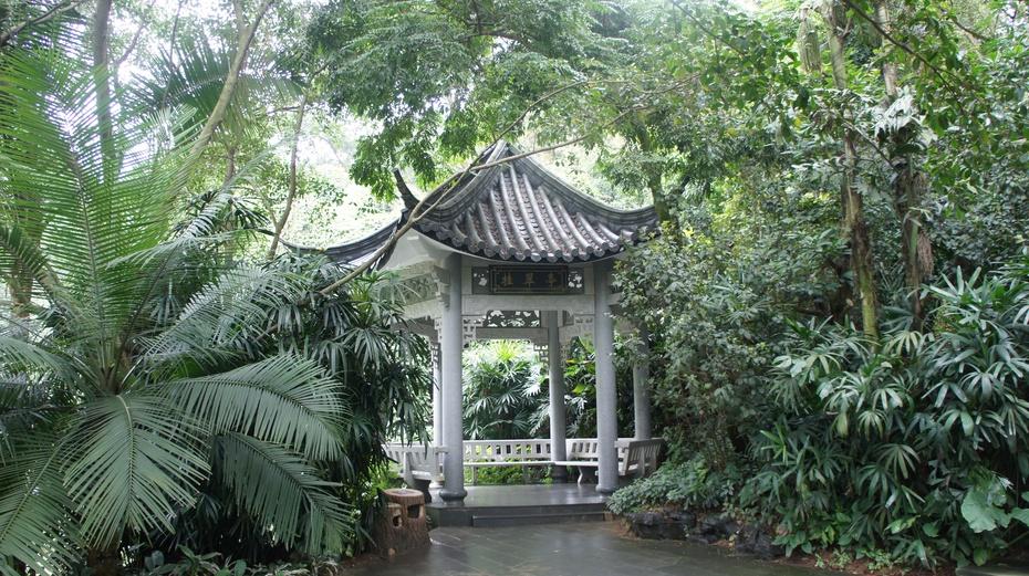 南宁青秀山:雨林大观 - 余昌国 - 我的博客