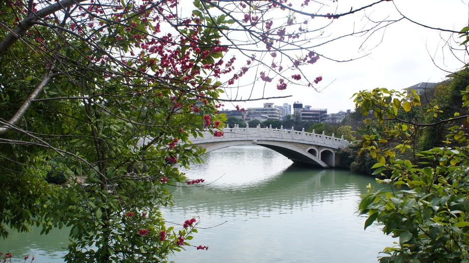 广西桂林:桃花绽放榕湖畔 - 余昌国 - 我的博客