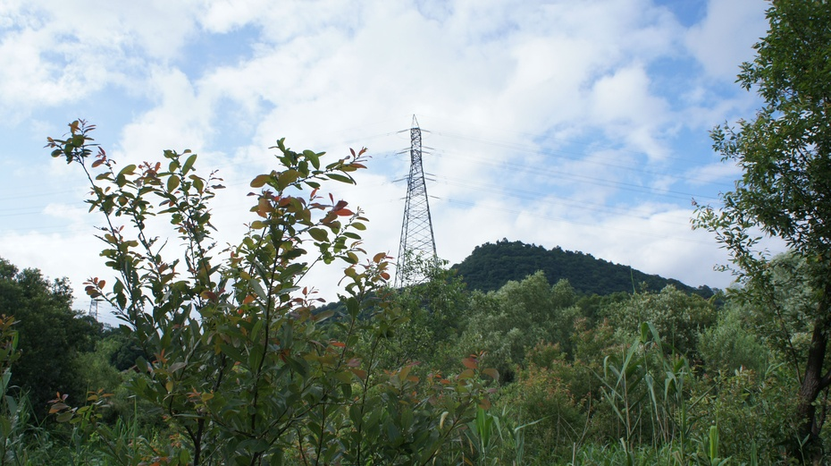 鲜为人知的杭州江洋畈生态公园 - 余昌国 - 我的博客