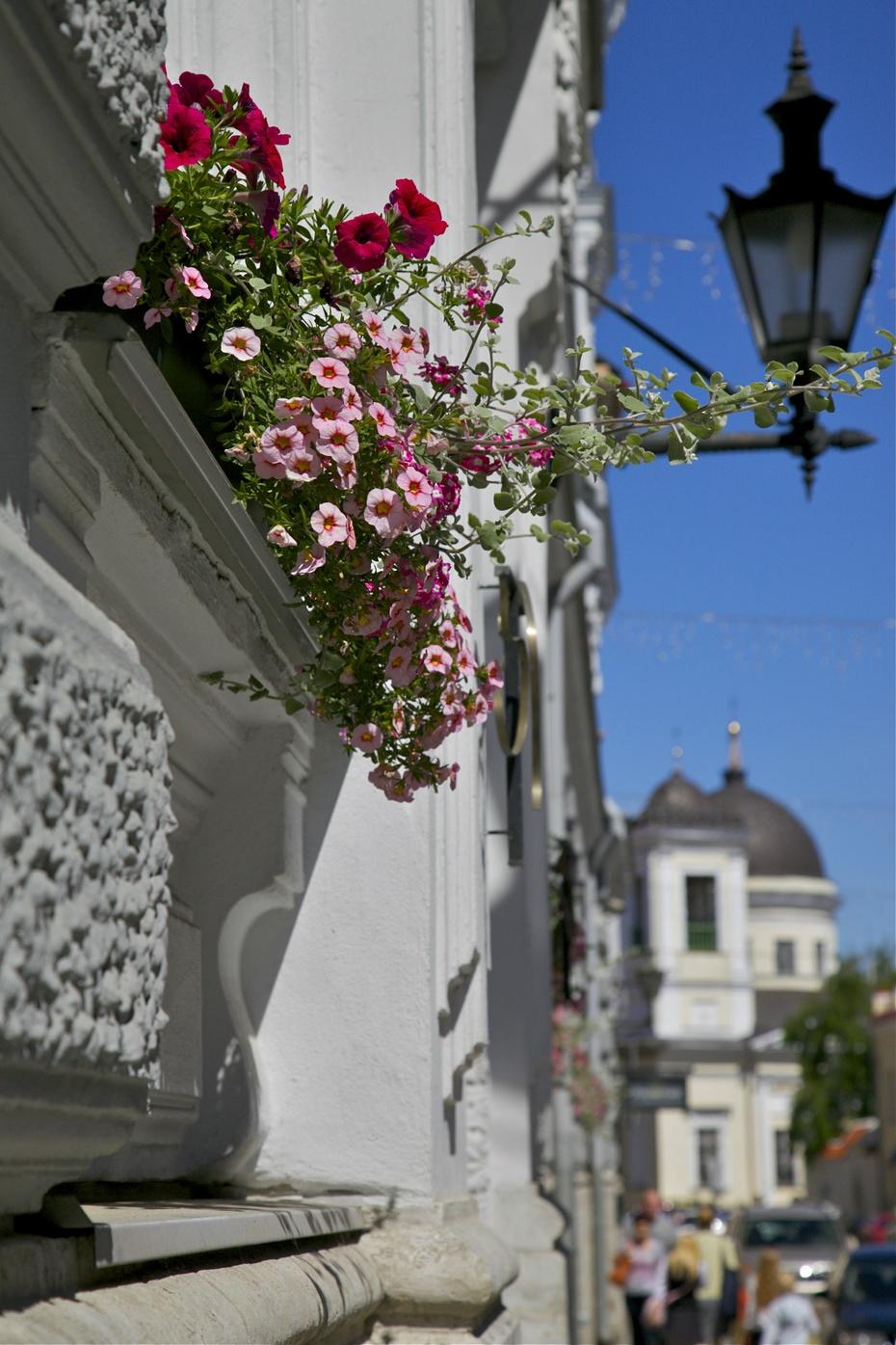 风景总在路上:我们的足印,波罗的海的风 - H哥 - H哥的博客