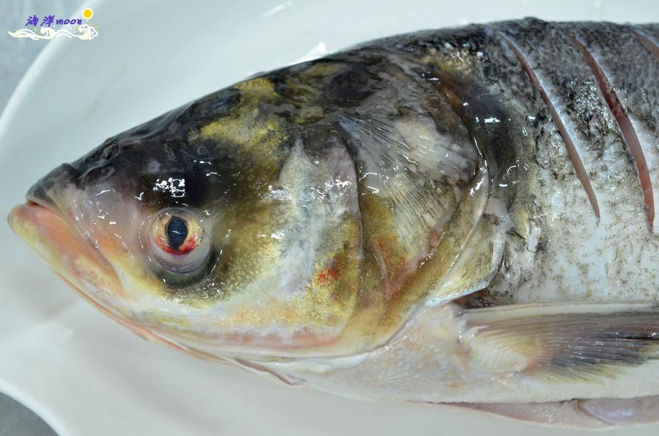 解密舌尖2——砂锅鱼头汤 - 慢美食 - 慢 美 食