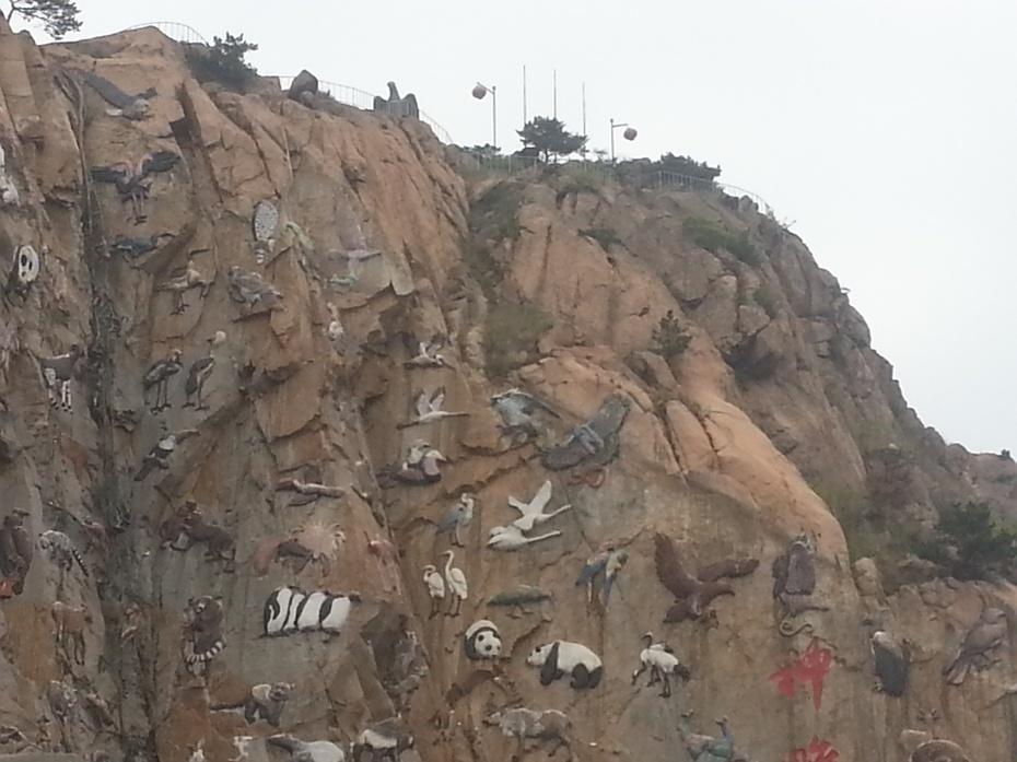 五一游威海之西霞口神雕野生动物园
