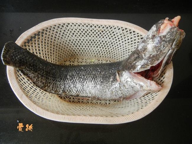 解密舌尖2 -清蒸鱼 - 慢美食 - 慢 美 食