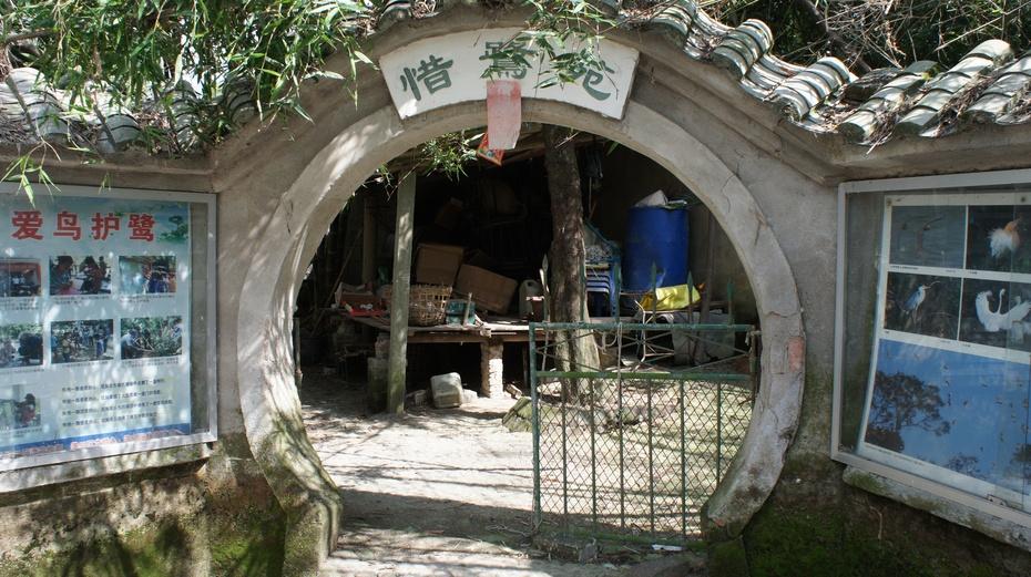 """走进""""白鹭之乡"""":防城港市渔鹭园 - 余昌国 - 我的博客"""