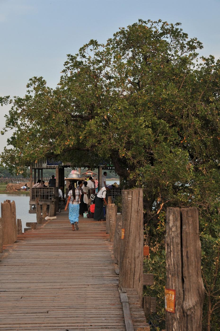 [  ]缅甸曼德勒乌本桥U Bein Bridge光影 - 冬日暖陽 - 缘来如此心动