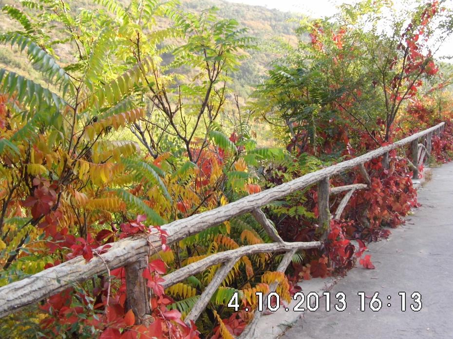 安家沟的风景 - 九成 - 九成的博客