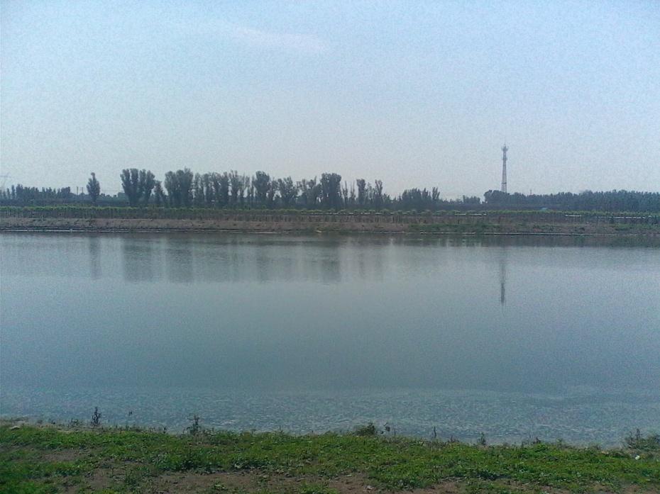 阳光洒满小清河(原创) - m13716638084泉水叮咚 - 泉水叮咚