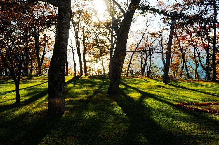 北海道:静谧动人的支笏湖秋光 - 海军航空兵 - 海军航空兵