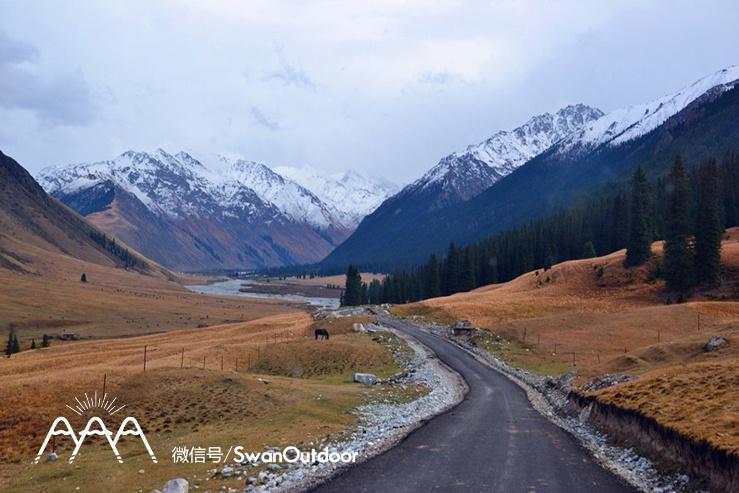 车行在景区里,天山的雪山,雪松,雪水.