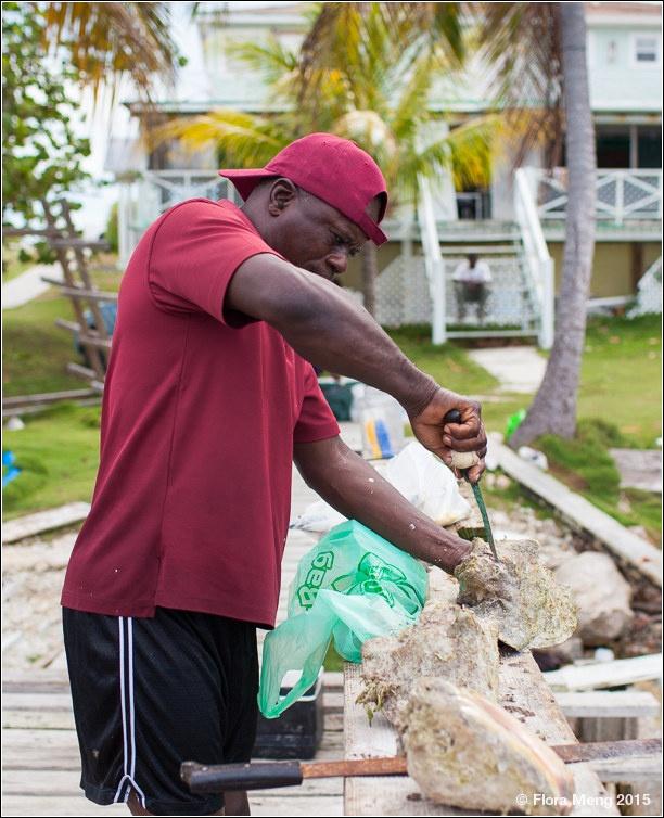 巴哈马[Bahamas] 体验海底抓龙虾 - 海军航空兵 - 海军航空兵