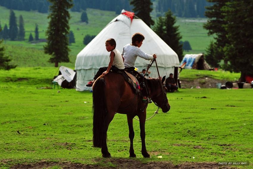 不是在游玩在风景区旅游,而是生于斯长于斯,马背就是他全部的儿童乐园
