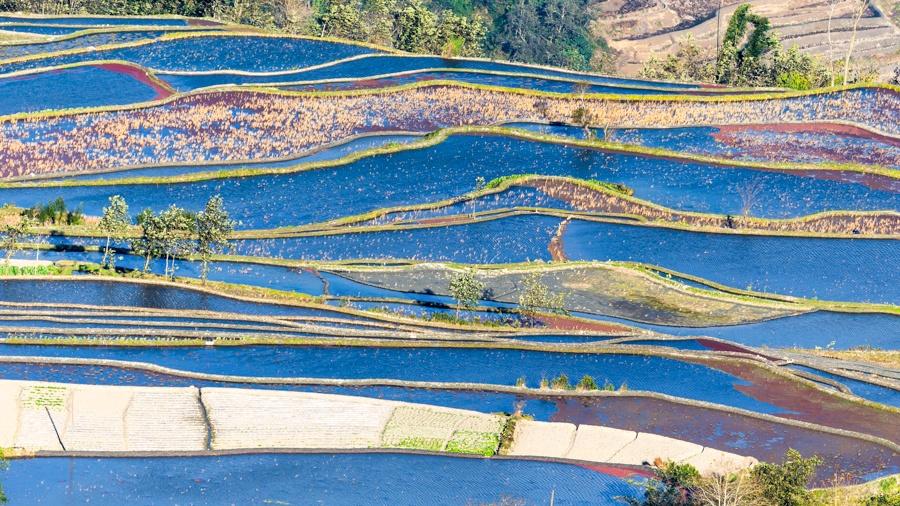 蓝色的元阳梯田更美 - 余昌国 - 我的博客
