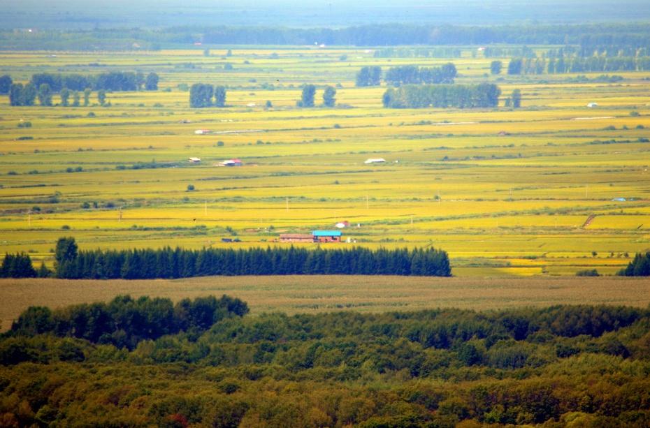 北疆红塔红旗岭·一路向北(五) - zq8523 - 852农场3分场(20团3营)知青网
