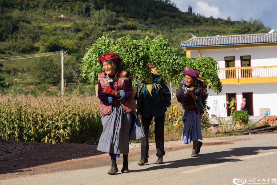 女儿国泸沽湖 男人梦想的天堂 - 余昌国 - 我的博客