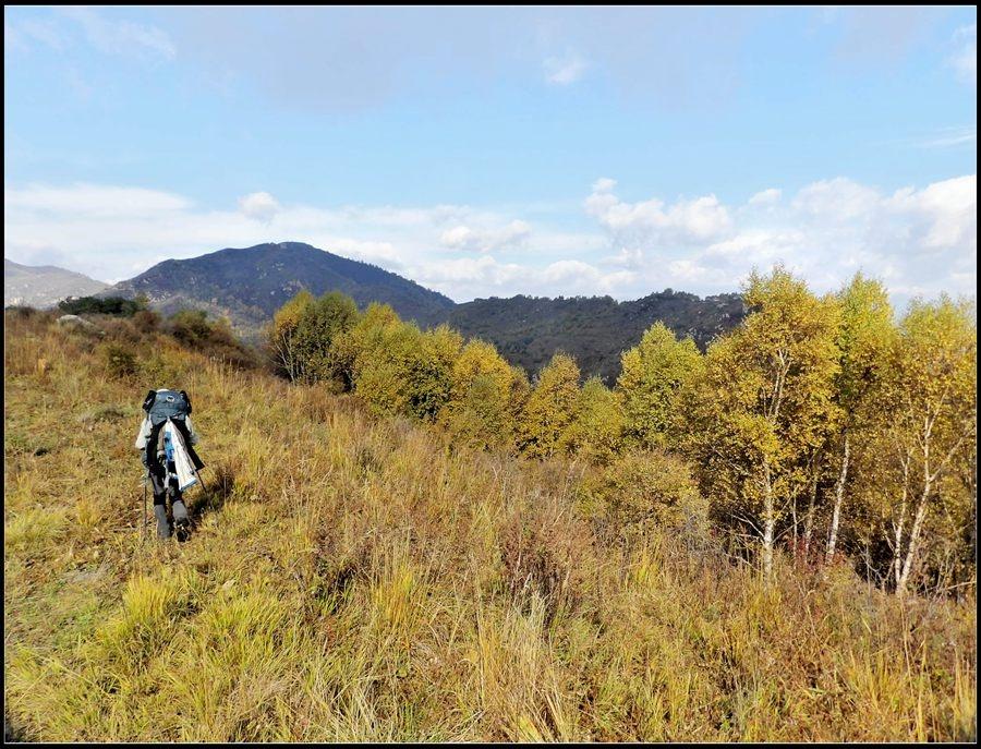 行D20 金秋十月,三个男人一只狗的故事 14年10.1北驼到歪头山穿越