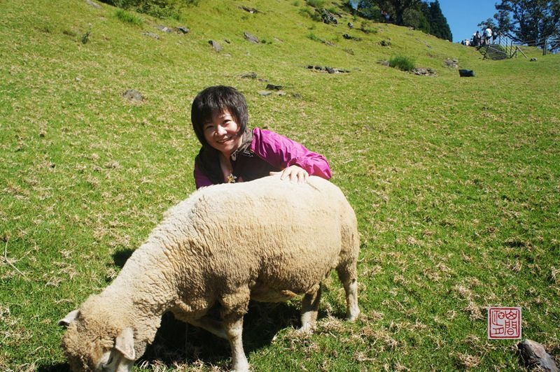 串珠绵羊步骤图解