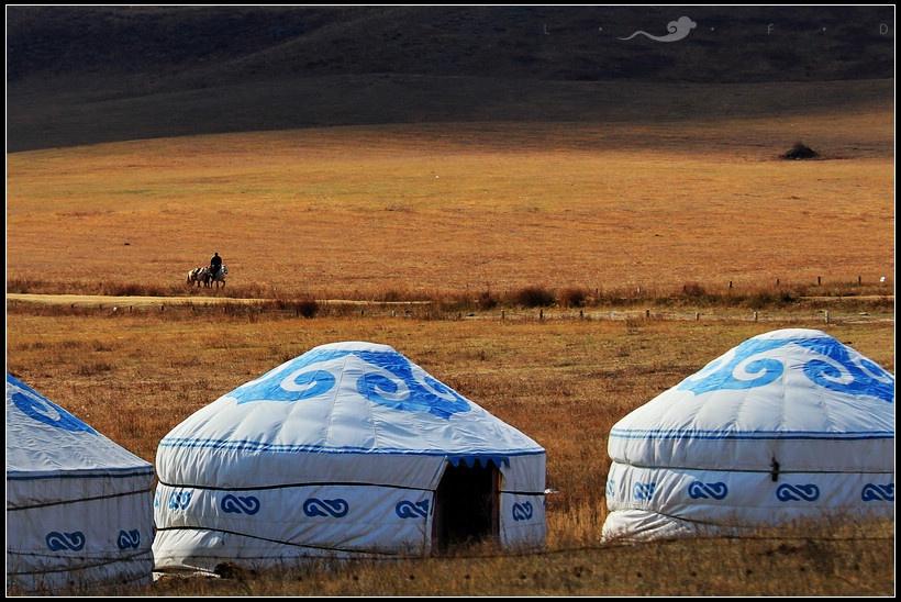 既然坝上是草原,那么那里一定少不了草原上的游牧民族和他们的蒙古包