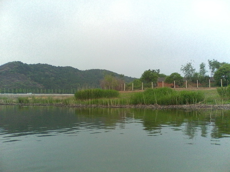 漫步夕阳河岸边(散文) - m13716638084泉水叮咚 - 泉水叮咚