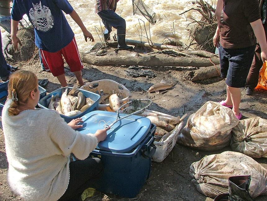 加拿大春季捕鱼活动 - sihaiyunyou - sihaiyunyou的博客
