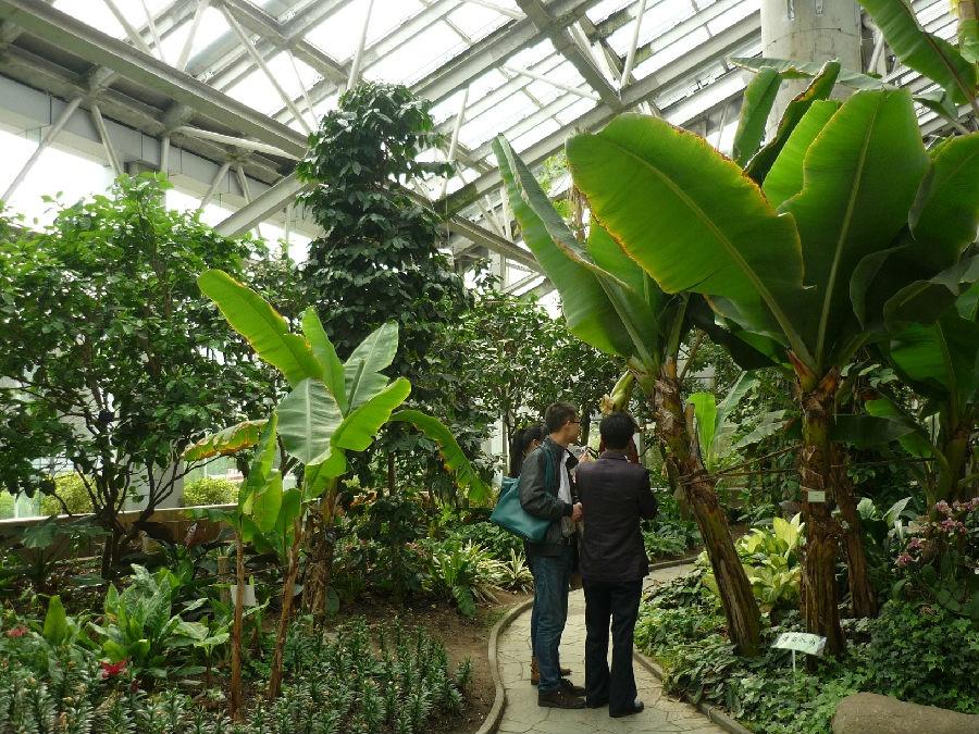 上海植物园见闻-护花使者 - 长寻堂主 - 长寻堂主