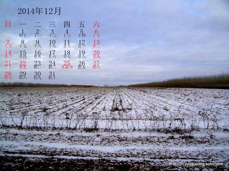 大荒恋曲-献给新年的日历  场部 郁百雄 - zq8523 - 852农场3分场(20团3营)知青网