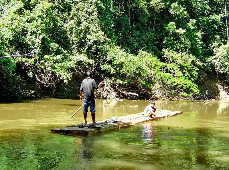神秘的亚马逊河热带雨林探险(二)危机四伏的密林湖泊