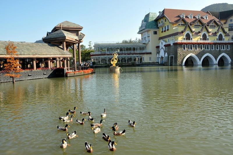 游深圳茶溪谷---因特拉根 - 菊香的博客 - 菊香的博客