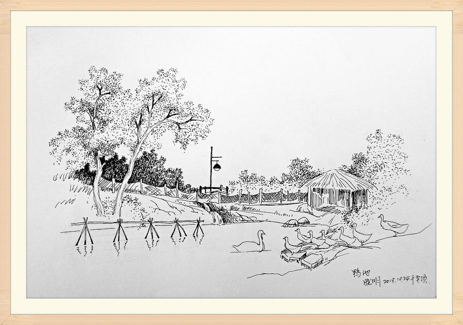 钢笔画/素描平顶(十)小池塘