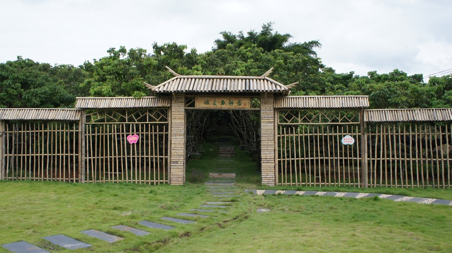 走进玉林五彩田园 感受特色农业的魅力 - 余昌国 - 我的博客