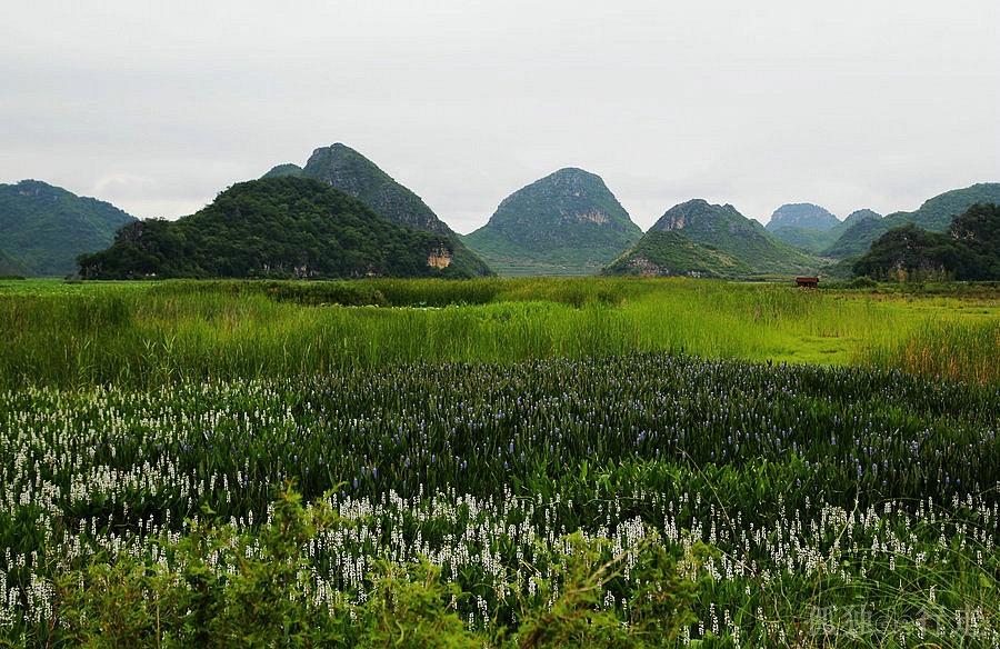 2014年06月22日 - 余昌国 - 我的博客