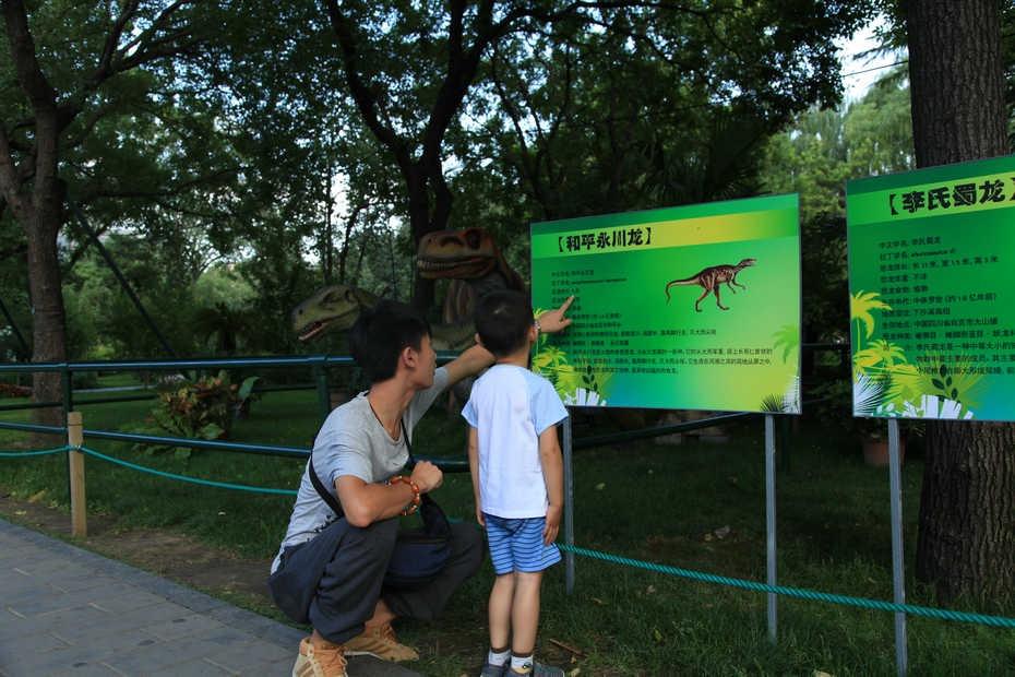 暑期乐园——陶然亭恐龙展 - 下午茶馨 - 下午茶馨展示页