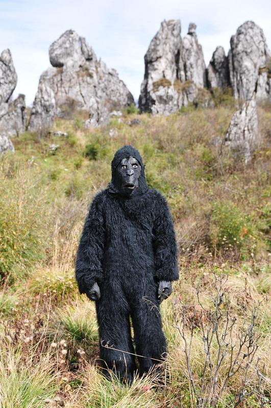 【小一】游原始森林神农架,探寻野人足迹图片