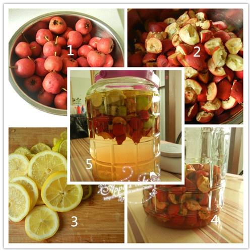 檸檬酵素的製作方法 - 圖片專欄 - 邁浩資訊網