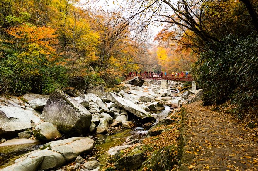 天然画廊光雾山 中国红叶之乡 - 卧虎藏龙 - 卧虎藏龙