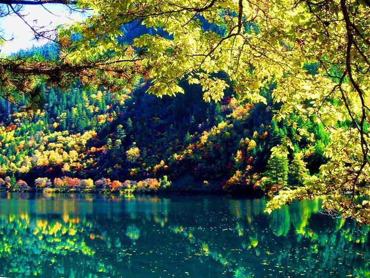 秋天是一幅画 秋天是一首歌 - 白雪 - 雪之吻