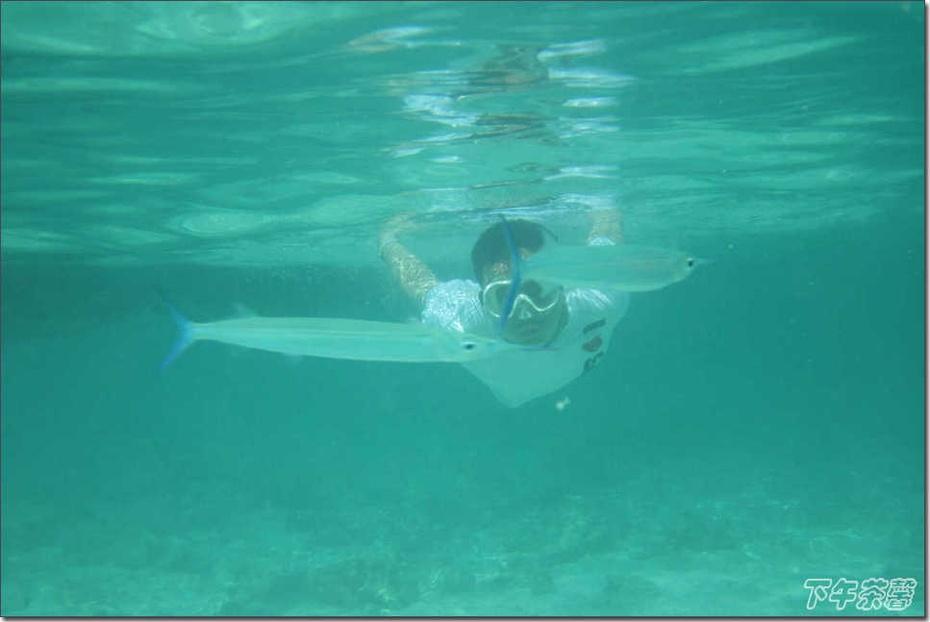 去塞班岛度假 - 下午茶馨 - 下午茶馨展示页