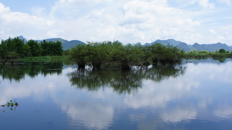 """""""漓江之肾"""":桂林会仙湿地 - 余昌国 - 我的博客"""