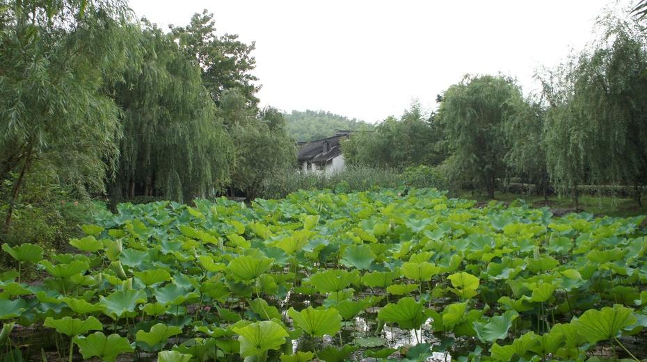 苏州最美的山村:旺山 - 余昌国 - 我的博客