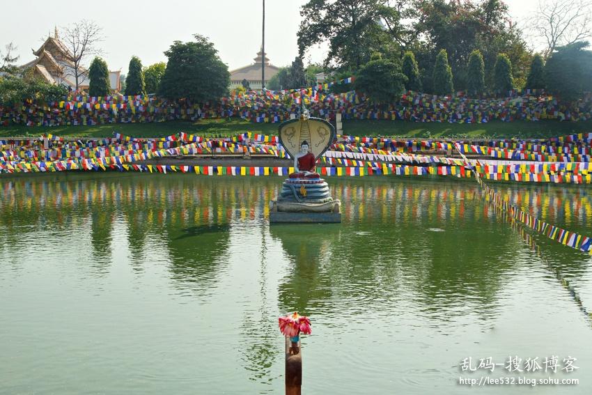 印度菩提伽耶,佛陀悟道圣地的奇遇 - 海军航空兵 - 海军航空兵